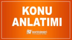 11. Sınıf Türk Dili ve Edebiyatı Konu Anlatımı