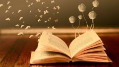 2019 YKS Türk Dili ve Edebiyatı Konuları ve Soru Dağılımları(ÖSYM-YÖK-MEB)
